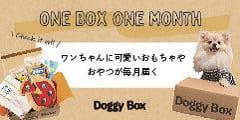 愛犬向けおもちゃとおやつの定期便サービス 【Doggy Box】