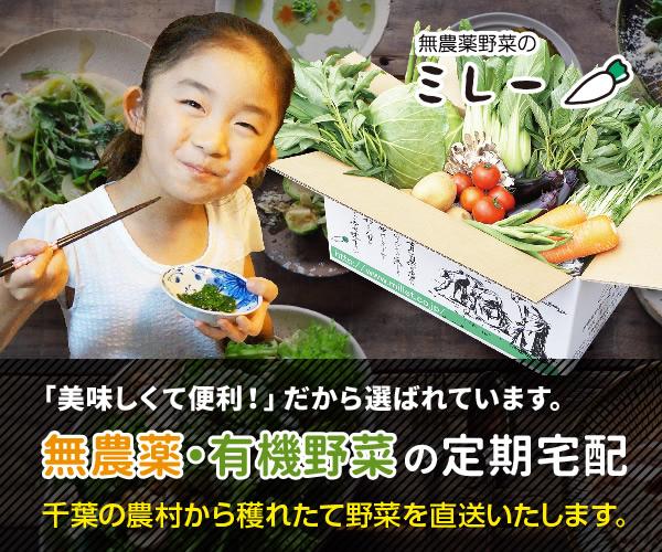 朝穫れの新鮮野菜を当日発送【無農薬野菜ミレー】利用モニター