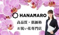 胡蝶蘭の通販サイト【HANAMARO】